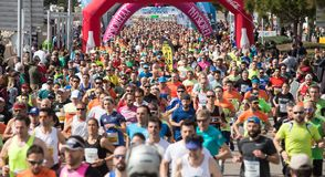 Palma half marathon runners during popular race wide. Runners compete during the Palma half marathon popular race in the Spanish island of Mallorca royalty free stock images