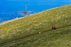 Runners with dog crossing a vast pasture Royalty Free Stock Image