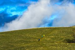 Runners with dog crossing a vast pasture Stock Image
