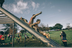 Runners going down structure in a test of extreme obstacle race Royalty Free Stock Photography