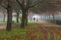 Runners Joggers  in an Autumnal Park with Fog Royalty Free Stock Image