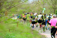 Runners  at marathon race Stock Photography