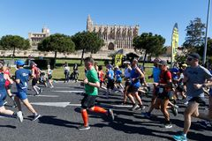 Runners during palma half marathon passing next to palma cathedral. Runners pass next to Palma de Mallorca cathedral during the half Marathon race in the Spanish royalty free stock images