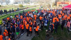 Runners at start royalty free stock image