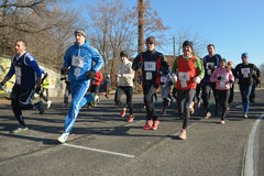 Runners taking part in the competition Royalty Free Stock Photo