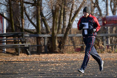 Runners taking part in the competition Royalty Free Stock Images