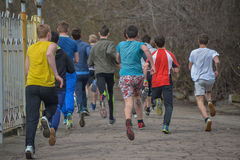 Runners are taking part in regional cross-country race Stock Image
