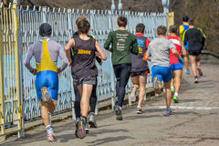 Runners are taking part in regional cross-country race Stock Photography