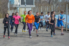 Runners are taking part in regional cross-country race Stock Images