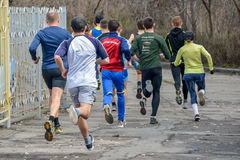 Runners are taking part in regional cross-country race Royalty Free Stock Photo
