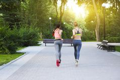 Runners training outdoors working out in the park. Runners training outdoors working out in the city park stock image