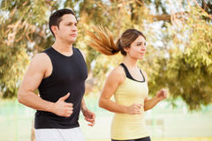 Runners working out together Stock Image