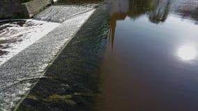 runnig水出色的意见  反射在水镜子的太阳 股票视频