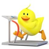 Running. Little chick running on treadmill - 3D render Stock Images