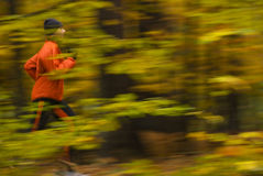 Running. Women running in the autumn forest, motion blur Stock Image