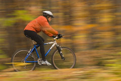 Running. Women riding in the autumn forest, motion blur stock photos