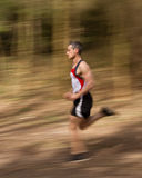 Running athlet. Athlet jogging through the forest Royalty Free Stock Image