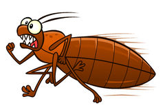 Running bedbug Royalty Free Stock Images