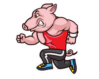 Running Big Hog Cartoon Stock Photos