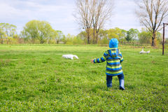 A running boy in a gumboots at the  field Royalty Free Stock Image
