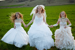 Running brides Royalty Free Stock Photo