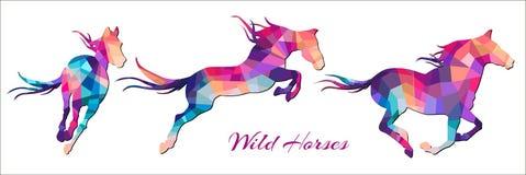 Running bright horses Royalty Free Stock Photo