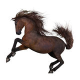 Running brown horse. Realistic 3d illustration of a running brown horse with a white background Stock Photo
