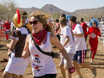 Running of the Bulls in America in Arizona Royalty Free Stock Photos