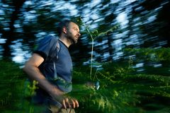 Running for a cache Stock Photos