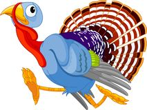 Running Cartoon Turkey stock illustration
