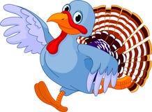 Running Cartoon Turkey Stock Image