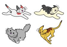 Running cats Stock Photos