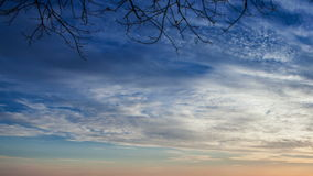 Running clouds on the Great sky with autumn branches time lapse footage stock video