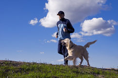 Running in couple. Man and his dog Golden Retriever running together in nature Stock Images