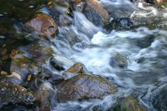 Running Creek. Running water flowing over rocks in creek Royalty Free Stock Photography