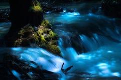 A running creek Royalty Free Stock Photo