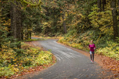 Running on a curvy road in autumn. Woman running on a curvy road in autumn Royalty Free Stock Photo