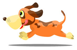 Running Dog Royalty Free Stock Photo