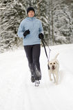 Running with dog Royalty Free Stock Photo