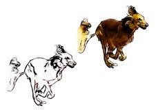 Running dog illustration Royalty Free Stock Photography