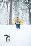 Running with a dog Stock Image