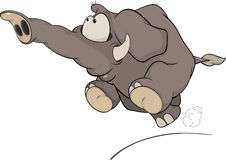 The running elephant calf cartoon Stock Images
