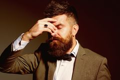Running a fashion business takes the heart of a gambler. Bearded man after barber shop. Man with long beard in business royalty free stock photo