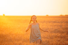 Running at the field. Little girl running at the orange evening wheat field Stock Photography