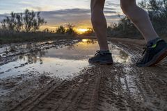 Running in the field at sunset in shorts. stock photo