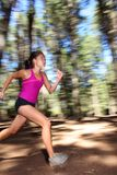 Running in forest at speed royalty free stock photography
