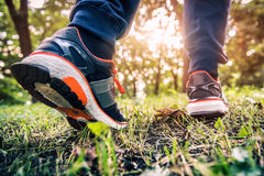 Running in the forest trail.  Stock Photos
