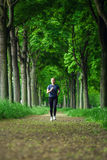 Running in the forest Royalty Free Stock Photos
