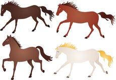 Running hästar Arkivbilder