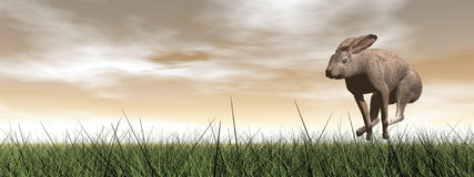Running hare - 3D render Stock Image